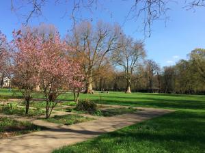 Aller au parc pour stimuler sa créativité